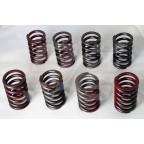 Image for VALVE SPRING SET MGB (NOT OE)