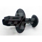 Image for RIVET RV8