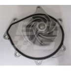Image for Water pump 2.0 V6 Petrol R400 R45 ZS