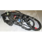 Image for ENGINE HARNESS - MGF & TF