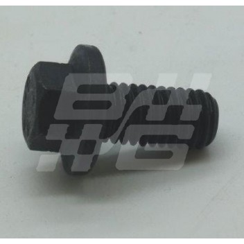 Image for Flange Screw M8 x 16