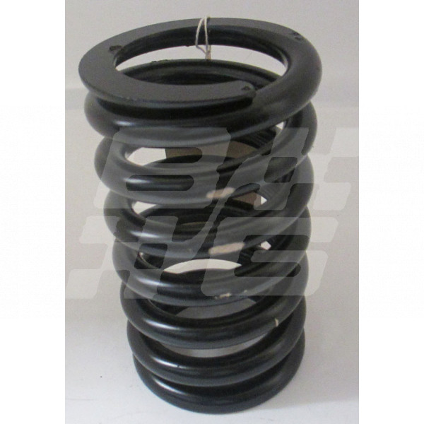 Image for SPRINGS 700LB x 6.85 INCH LONG