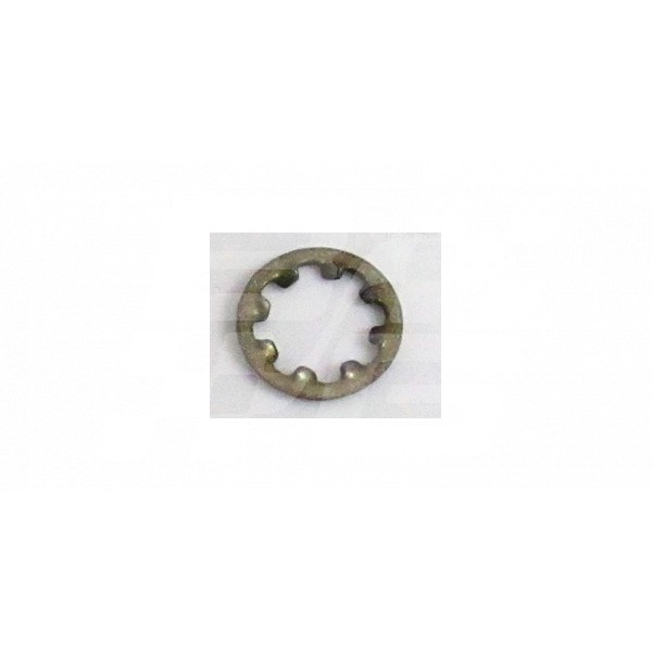 Image for Shake Proof Washer Int  1/4 INCH (Pack 10)